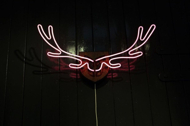 Neon Antlers by Sarah Blood